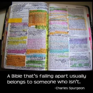 marked up Bible